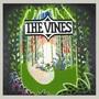 The Vines『Highly Evolved』このアルバムを聴けば、いつだってギターを始めた頃に戻れる