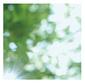 高野寛 『Everything is good』 noteで発表した楽曲を厳選し再録、開放感に包まれたミニ・アルバム