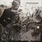 RICH ROBINSON 『The Ceaseless Sight』 ブラック・クロウズのギタリストによるソロ3作目