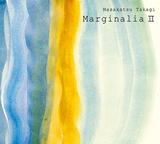 高木正勝 『マージナリアII』 虫や鳥の鳴き声など自然の音に合わせピアノを溶け込ませるシリーズ第2集