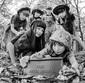 【特集:ZOKKON OF THE YEAR 16→17】Pt.1 BiSHや乃木坂46、RYUTist…アルバム豊作の2016年を象徴する20枚!