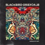 BLACKBIRD BLACKBIRD 『Tangerine Sky』
