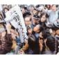 """【詩人・黒川隆介のアンサーポエム】第48回 椎名林檎 """"丸ノ内サディスティック"""""""
