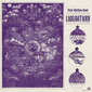 PETER MATTHEW BAUER 『Liberation!』 ウォークメンのベース/オルガン奏者が異国への憧れ表現した初ソロ作