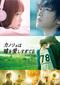 小泉徳宏 「カノジョは嘘を愛しすぎてる」 観る側に解釈の遊びを残してくれる人気コミック原作の映画がパッケージ化