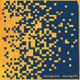 パイングローヴ 『Marigold』 ニュージャージーのバンドがラフ・トレード入り、アメリカーナ下地にした素朴で温かみあるギター・サウンド