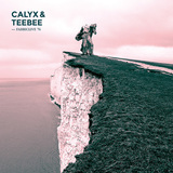 VARIOUS ARTISTS 『Fabriclive 76:Calyx & Teebee』