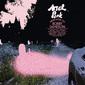 ウォー・オン・ドラッグスやグリズリー・ベアら、インディー・アメリカーナの最先端に立つアクトのアルバム・ガイド