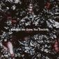 コボジール 『We Grow You Decline』 ベルクハインの新入レジデントDJ、フロア向け軸にアンビエントな楽曲も並ぶ初作