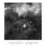 ポスト・クラシカル/エレクトロニカの名作MOTORO FAAM『Fragments』10年ぶりに復刻 時代感じさせない独創的な世界