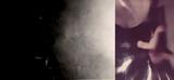ロスト・アラーフが50周年を記念して2枚組『LOST AARAAF』をリリース 灰野敬二からコメントも到着
