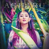 ACHARU 『ART OF FLOW』 Michitaら参加、マルチな才能発揮するSSW/ラッパーの7年ぶりフル作