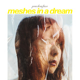 peachonfuse 『MESHES IN A DREAM』