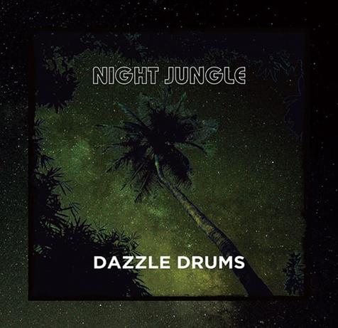 ダズル・ドラムス(Dazzle Drums)『NIGHT JUNGLE』密林の宴のように力強いアフロ・ハウス系トラックの数々