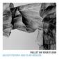 ベッカ・スティーヴンス&イーラン・メーラー(Becca Stevens & Elan Mehler)『Pallet on Your Floor』優しいピアノの音で際立つ声の説得力