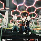 ブロッサムズ(Blossoms)『Foolish Loving Spaces』絶妙にブレンドされたトロピカルやネオアコ、アメリカーナなどの新味が刺激的