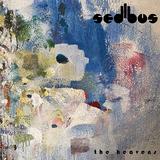 セディバス(Sedibus)『The Heavens』ジ・オーブ時代以来30年ぶりにコラボした2人が紡ぐ艶やかで夢幻的な音宇宙