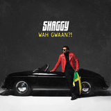 シャギー 『Wah Gwaan?!』 スマートな野性味を発揮した6年ぶりソロ作
