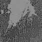ウォールズ 『Urals』 テクノを折衷したインディー・ポップ寄りの作風で人気のユニットによるアグレッシヴなチルアウト的新作