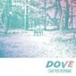 I Saw You Yesterday 『Dove』 東京発4人組の初フィジカル作は、リヴァーブ過多なサーフ・ポップをキャッチーに昇華
