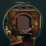 ワイルド・ナッシング、4年ぶり新作はウォッシュト・アウトらの音世界をアップデートしたポスト・チルウェイヴの新たな名盤