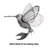 シュテフィ 『World Of The Waking State』 ベルリン最前線で培った絶品ディープ・テクノ作をオストグート・トンから