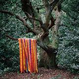 ジェイムス・ホールデン&アニマル・スピリッツ 『The Animal Spirits』 ライヴ・バンドと奏でたサイケでトランシーなサウンド