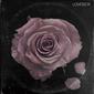 ラヒーム・デヴォーン&アポロ・ブラウン(Raheem DeVaughn & Apollo Brown)『Lovesick』硬質かつメロウなビートに乗せた狂おしい愛の歌