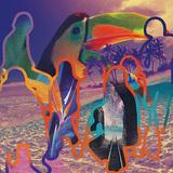 SEAHAWKS 『Paradise Freaks』