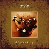 【ろっくおん!】第25回(1) 今月のレポート盤 XTC 『Skylarking』