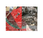 レディオ・スレイヴ 『Feel The Same』 キンキーでストレンジなトラックがみっちり収録された、当名義初のオリジナル作