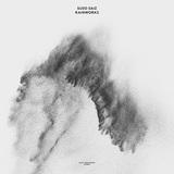 スーソ・サイス 『Rainworks』 スペインのニューエイジ作家10年ぶり新作、電子音+生楽器+自然音で静かな感動