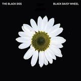 ブラック・ドッグ 『Black Daisy Wheel』『Post-Truth』 UKテクノ大御所が新作を2枚同時リリース