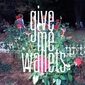 give me wallets、本日到着の初EP『In My Dreams』より80sフレイヴァー溢れる表題曲のPV公開