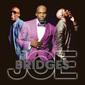 JOE 『Bridges』 円熟の境地と呼ぶにふさわしいエレガントなR&Bが目白押しの11枚目