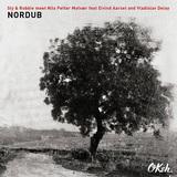 スライ&ロビー・ミーツ・ニルス・ペッター・モルヴェル 『Nordub』 アンビエントでアヴァンギャルドなニルスの世界観にスラロビのタフなリズムが溶け込む