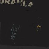 ドラーラ 『Useless Coordinates』 ソニック・ユース、ジェイムズ・チャンス、マイブラ、ポップ・グループ――すべてが渾然一体となったようなファースト