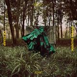 オーケイザープ&マンテ・リバニ 『Closer Apart』 南アフリカ出身プロデューサー×ダンサー兼シンガーの初作