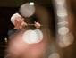 ベルリン・フィルハーモニー管弦楽団『ジョン・アダムズ・エディション』 ヴァナキュラーな魅力を知る格好の入門編