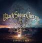 ブラック・ストーン・チェリー 『Family Tree』 ブルース濃度を上げながら激グルーヴィーかつ爆発力のある演奏をお見舞い!