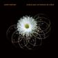 アンドレ・メマーリ(André Mehmari)『Música Para Uns Tempos De Cólera』ブラジル屈指のピアニストが混沌とした時代を音で活写