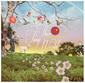 松尾清憲 『THIS TINY WORLD』 鈴木慶一らが作詞で参加、さまざまな手触りの楽曲並ぶ4年ぶりフル作