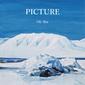 王舟 『PICTURE』 丸ごと一人で宅録した新作は、ジャズ・ポップなど人懐っこい音世界&まろやかなトーン貫く歌心が◎