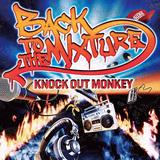 KNOCK OUT MONKEY 『BACK TO THE MIXTURE』 楽しみながら音楽をミクスチャーしている感覚が痛快なミニ作