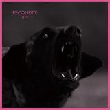 RECONDITE 『Iffy』