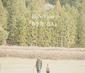 HoSoVoSo 『春を待つ2人』 リリカルでフォーキーな楽曲、なにより声が魅力的な新鋭シンガー・ソングライター