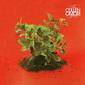 カレン・オオモリ 『New Misery』 元スミス・ウェスタンズのメンバー、〈ダーク・ポップ〉テーマにシンセ・サウンド聴かせる初ソロ作
