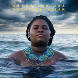 ダイメ・アロセナ 『Sonocardiogram』 キューバの歌姫、自身のルーツに回帰した3作目