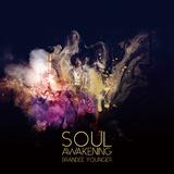 ブランディー・ヤンガー  『Soul Awakening』 グラスパーやコモンと共演してきたハープ奏者のスピリチュアルアルな世界