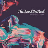 VARIOUS ARTISTS 『TheSoundYouNeed』